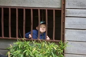 im zoo mit onkel marc