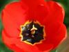 april 2014 - urlaub in frankreich (louviers)