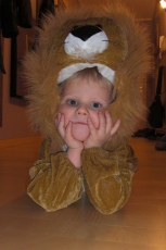 kevin als löwe